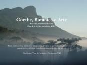 botanica e arte